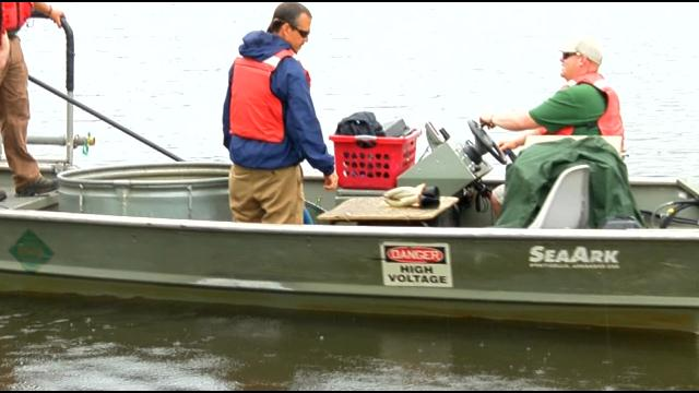 Kinston Pond Re-Stocked for Kid's Free Fishing Event (Image 1)_3062