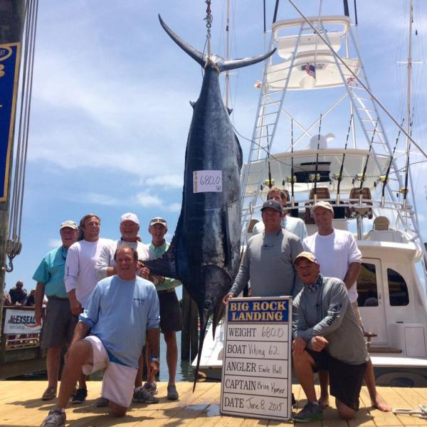 57th Annual Big Rock Blue Marlin opens with 680lb catch off the Viking 62 from New Jersey (Image 1)_3318