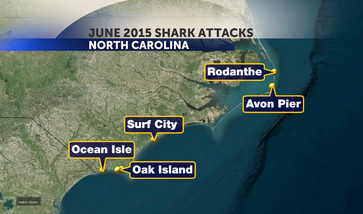 MAP OF SHARK ATTACKS_23552