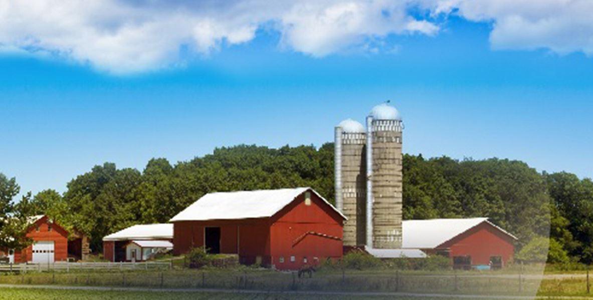 farm_156323