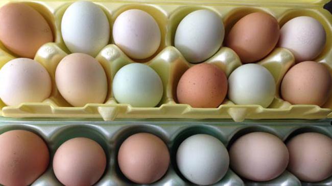 eggs_195773