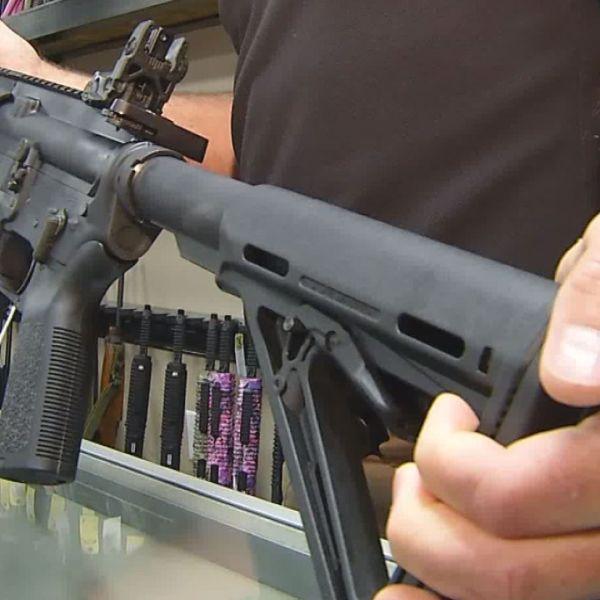 assault weapons ban_232781