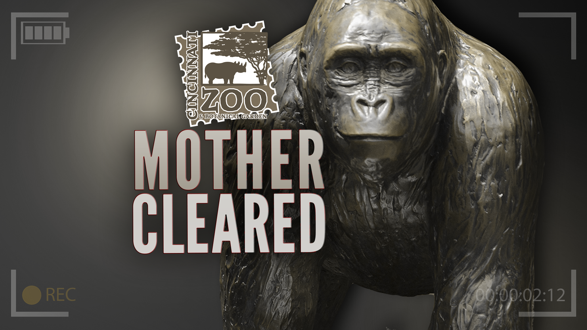 Mother Cleared Gorilla Zoo_226377