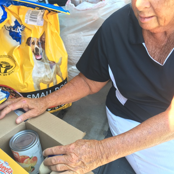 food-collection_268211