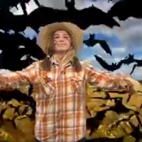 scarecrow_294768