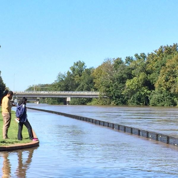 tar-river-flooded-2_285776