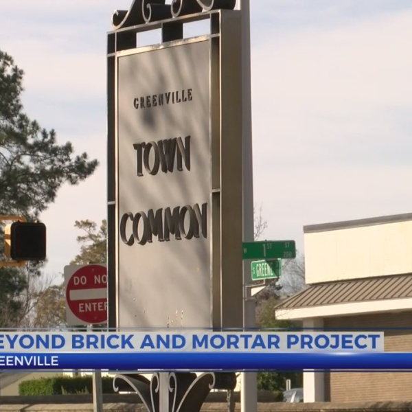 Beyond Bricks and Mortar to piece together Greenville Town Common's past