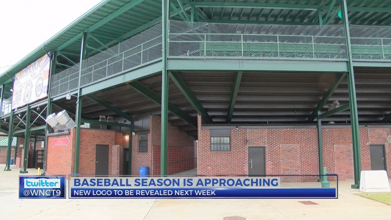 Down East Wood Ducks to live stream logo unveiling