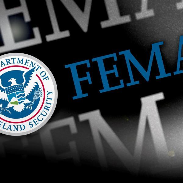 FEMA_334173