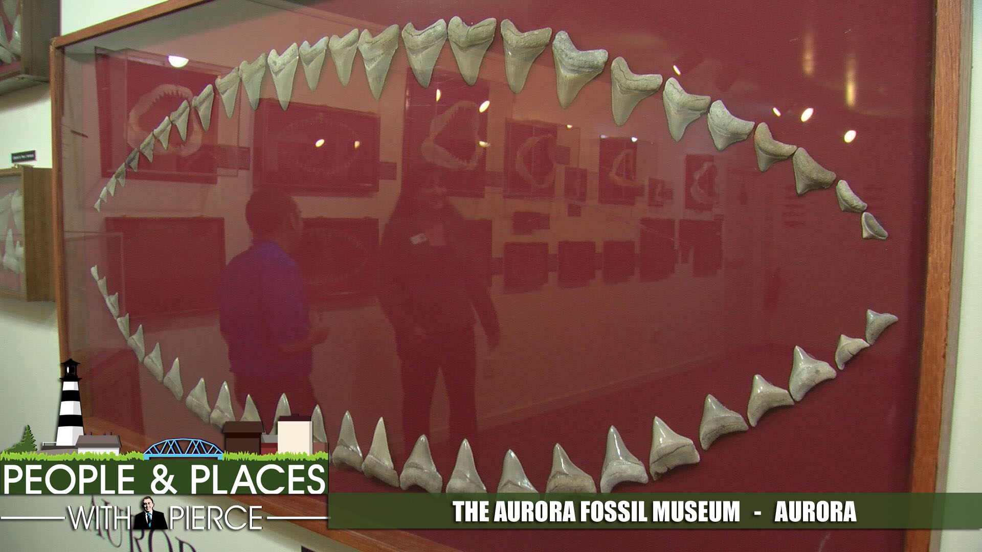 aurora-fossil-museum-ppp-for-web_335394