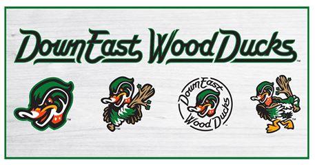 down-east-wood-ducks-2_329075