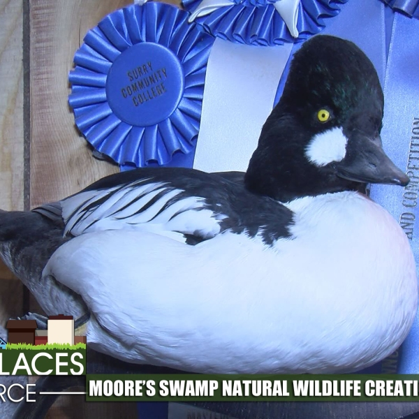 moore's swamp taxidermy ppp for web_369294