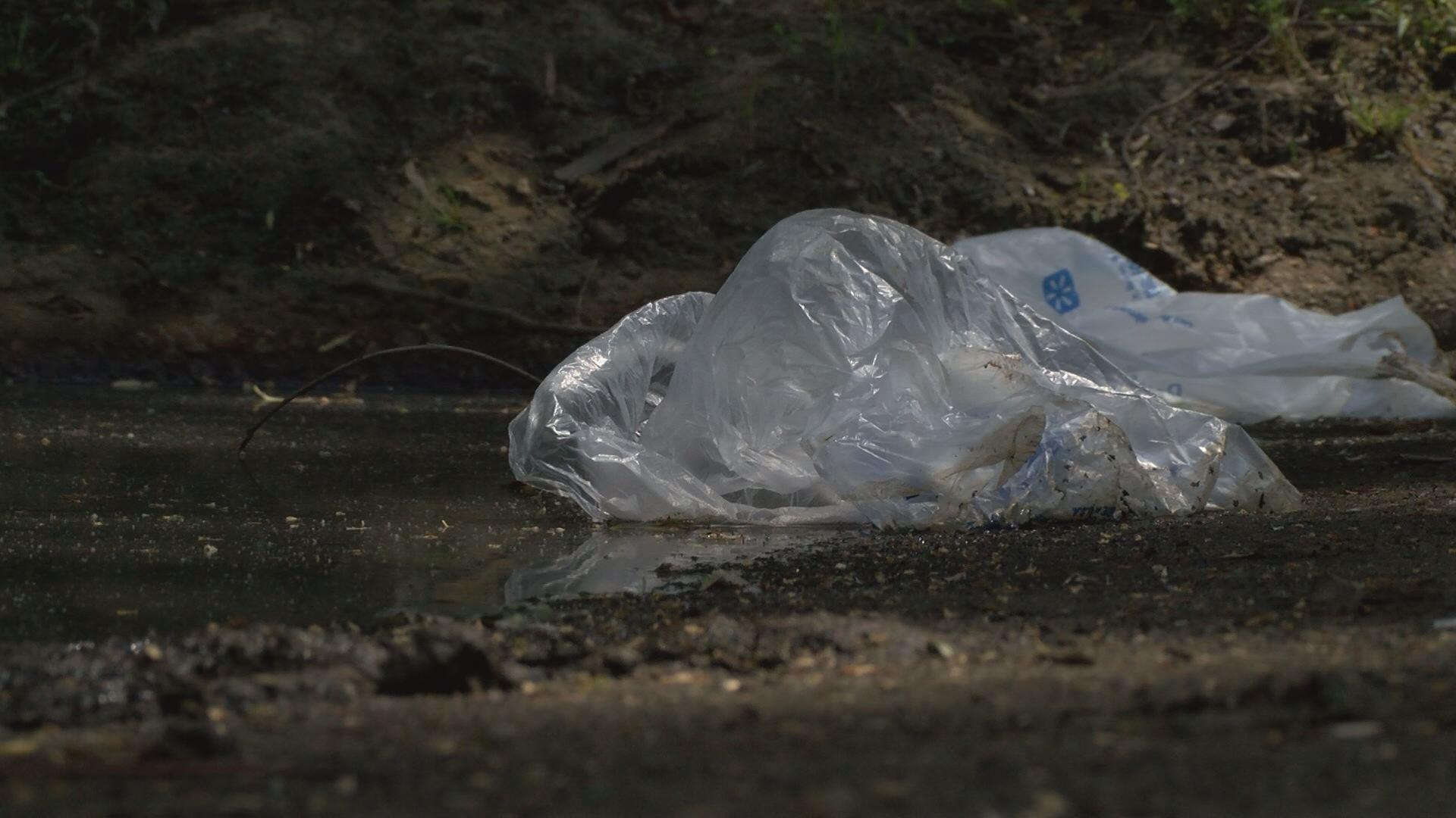 trash cean up_390066