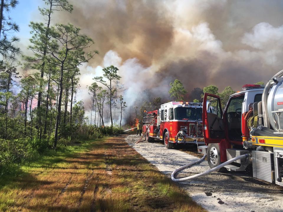 CORBETT LANE FIRE 5_407669