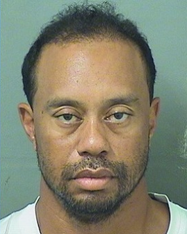 Tiger Woods Mugshot_412389
