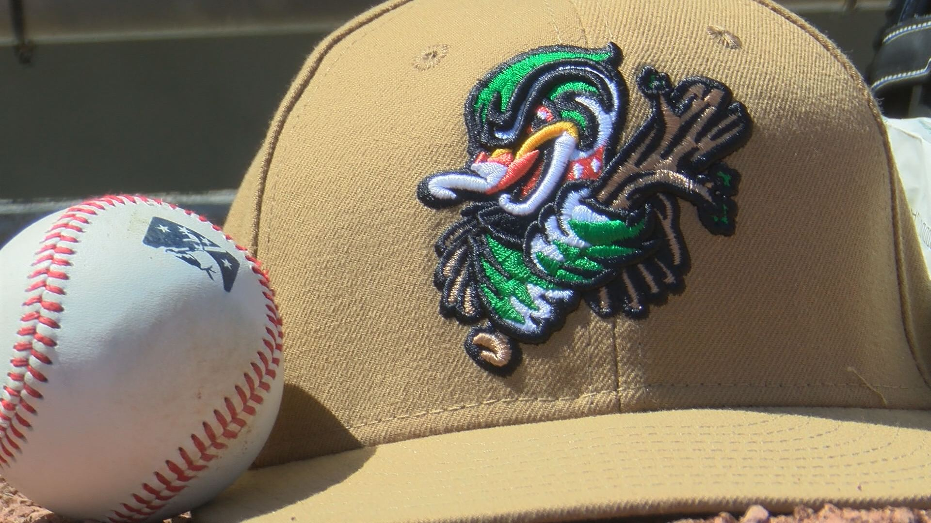 Wood Ducks Hat and Ball_380986