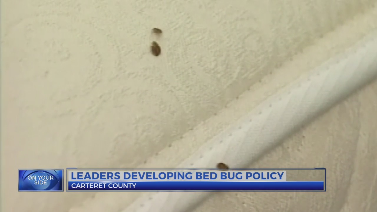 Carteret County leaders developing bed bug policy