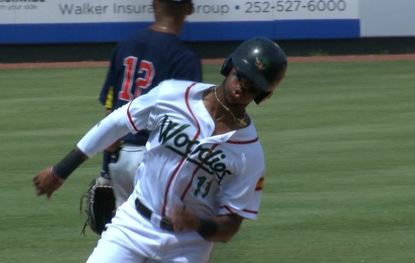 TiQuan Forbes Wood Ducks_434721