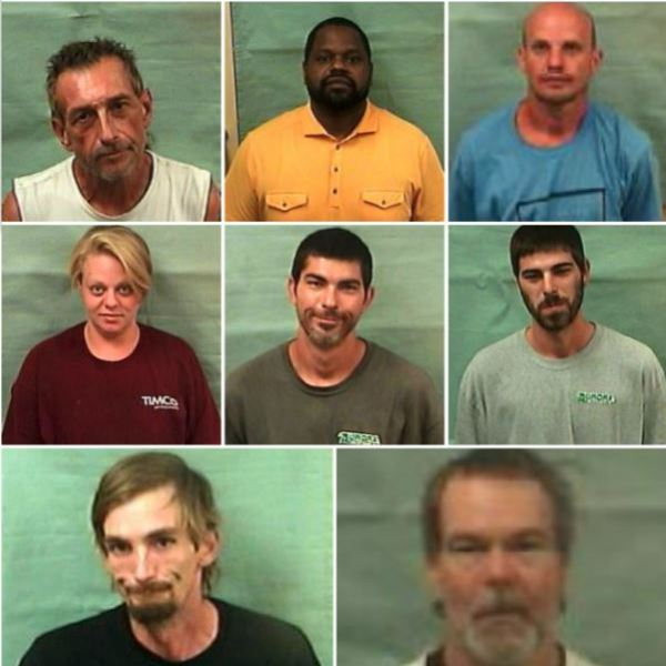 pamlico arrests_474035