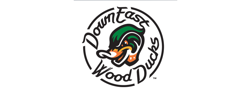 Wood Ducks Logo_433702