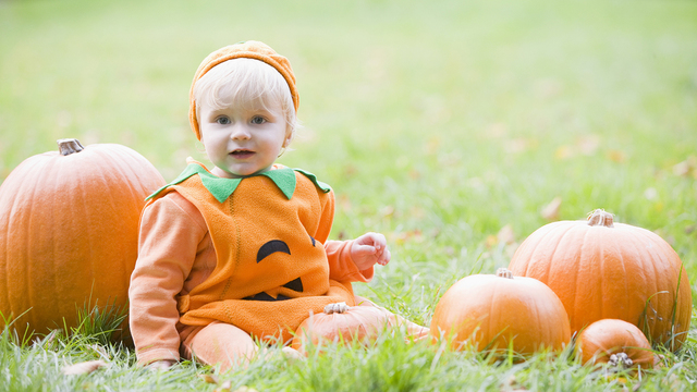Baby Boy Outdoors In Pumpkin Costume With Real Pumpkins_492863
