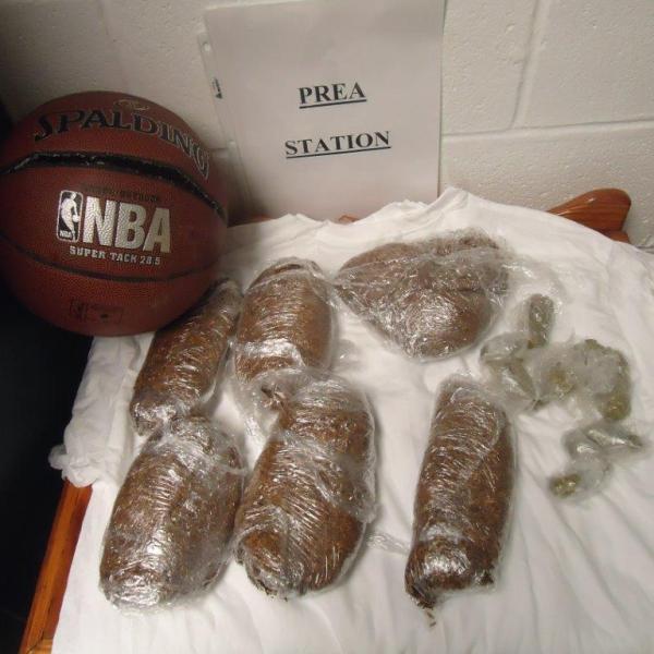 tyrrell basketball bust_491780