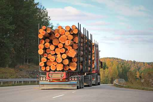 Logging Truck on Rural Road_518257