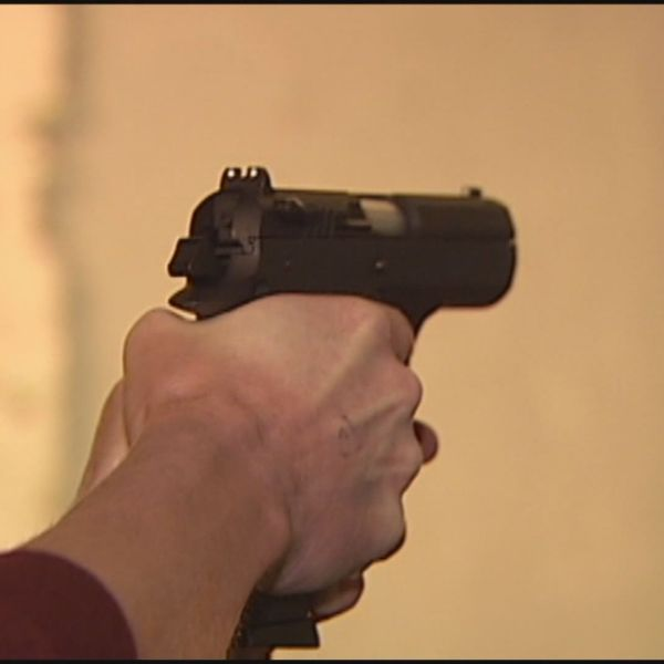 Controversial gun bill moves one step closer to law (Image 1)_13115