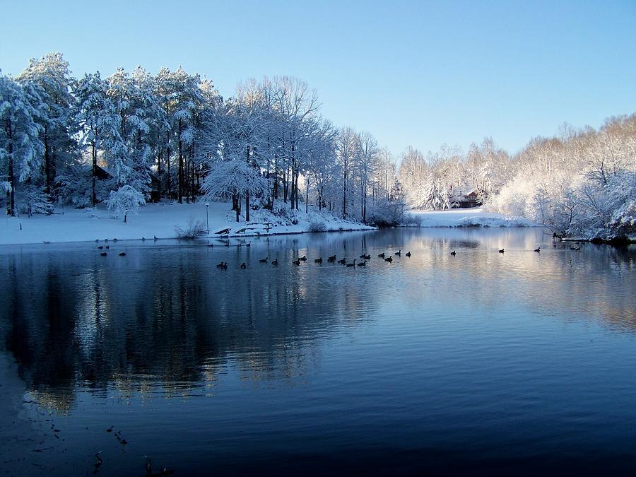 ducks-in-a-snowy-lake-robert-pennix_561555
