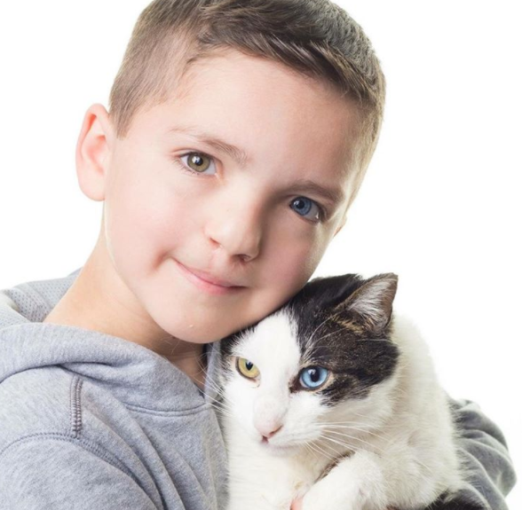 Boy and cat_1522778648831.PNG.jpg