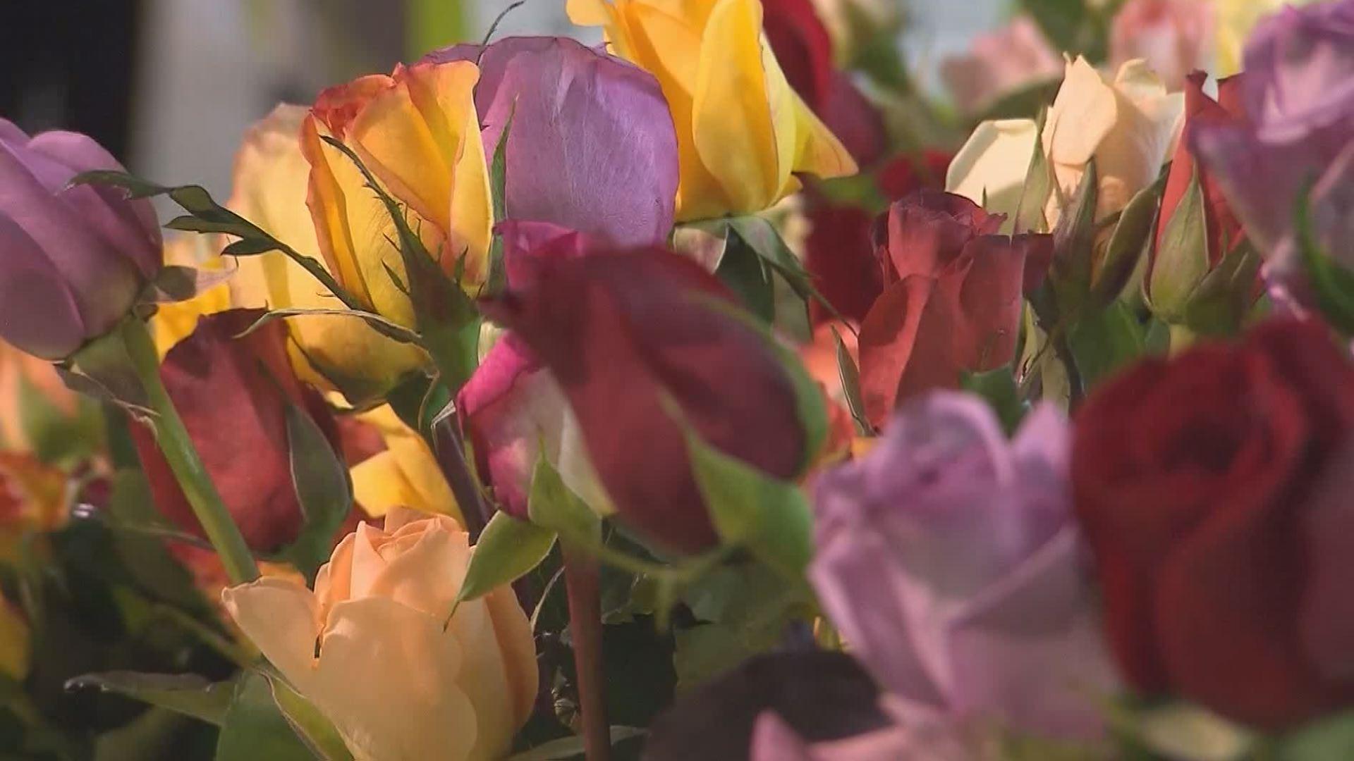 flowers_1526038178984.jpg
