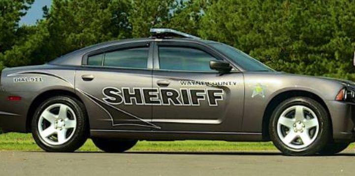 wayne county sheriff_598191-873704001