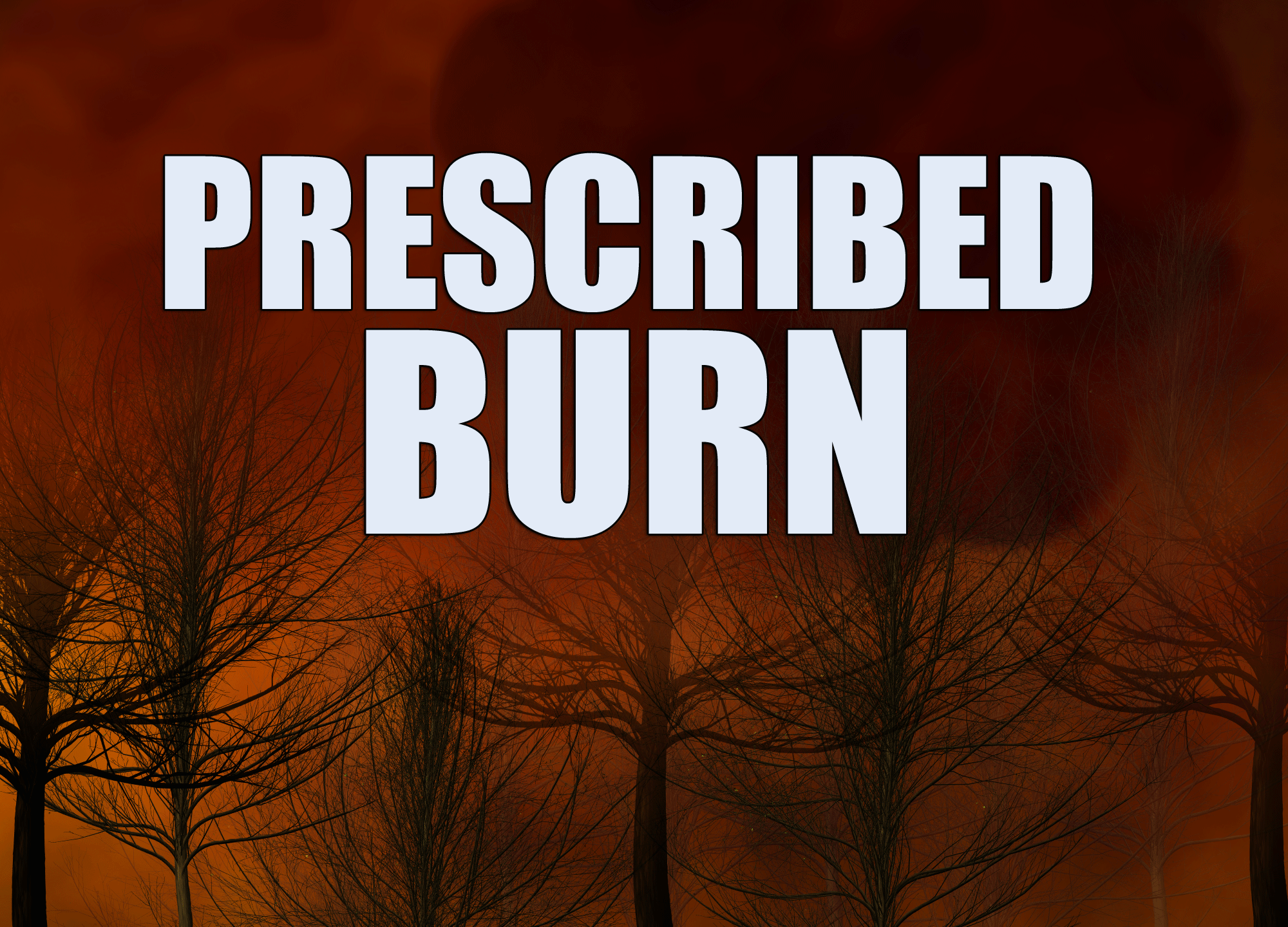 prescribed-burn_429000