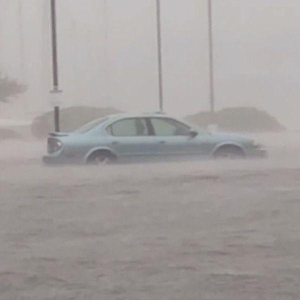 FLOOD CARS_1541156752184.jpg.jpg