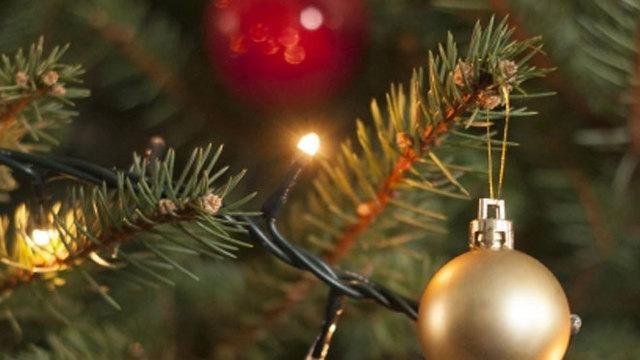 christmas-tree_36083970_ver1.0_640_360_1542370471727.jpg
