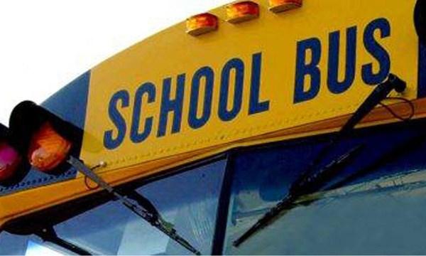 school bus_1523296794937.jpg_39434615_ver1.0_640_360_1542035360001.jpg.jpg