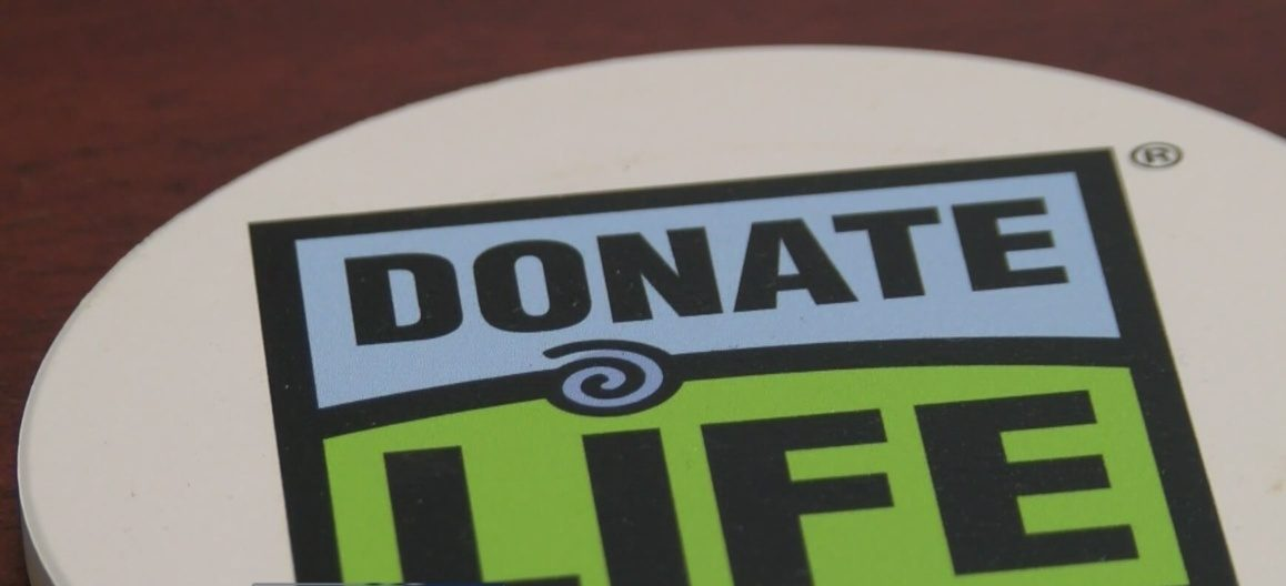 The importance of organ donation