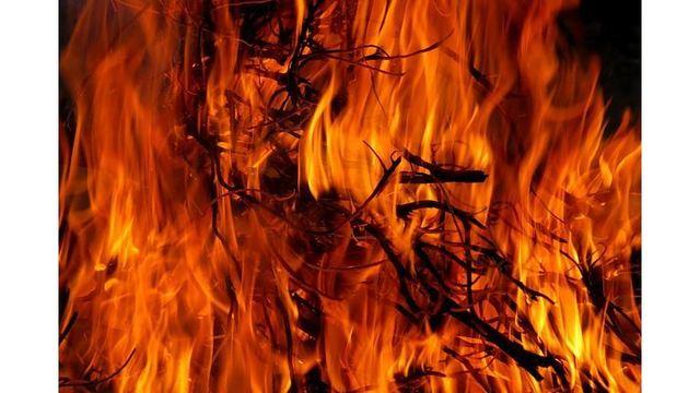 brush-fire-generic_36174383_ver1.0_640_360_1553467867527.jpg