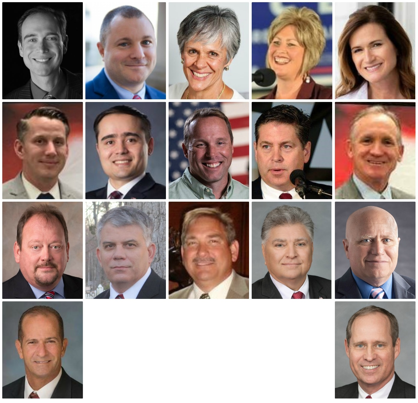 RepublicanCandidates for N.C. Congressional District 3