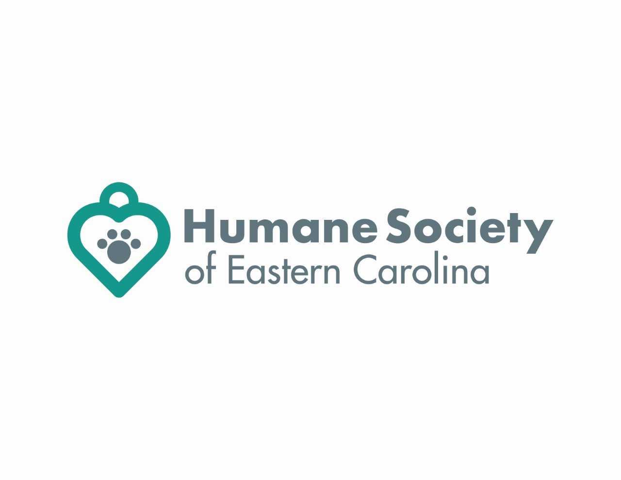 HSEC Logo 2019