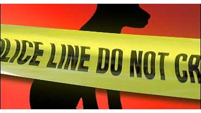 dog police line_1554311884206.jpg_80500261_ver1.0_640_360_1554325655900.jpg.jpg