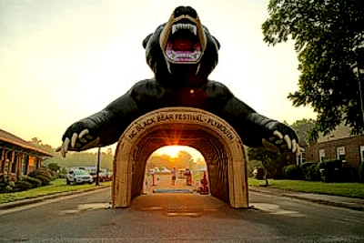 NC Black Bear Festival 1