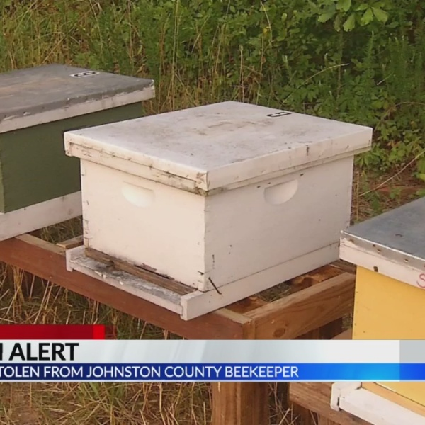 Bees_stolen_from_Johnston_County_beekeep_0_20190604032209-873704001