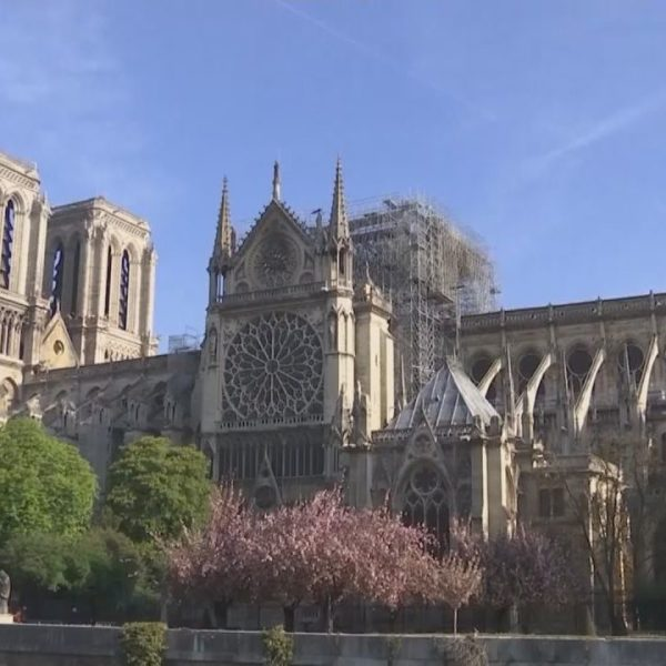 Notre-Dame-041719-e1555607455641_1560626370986.jpg