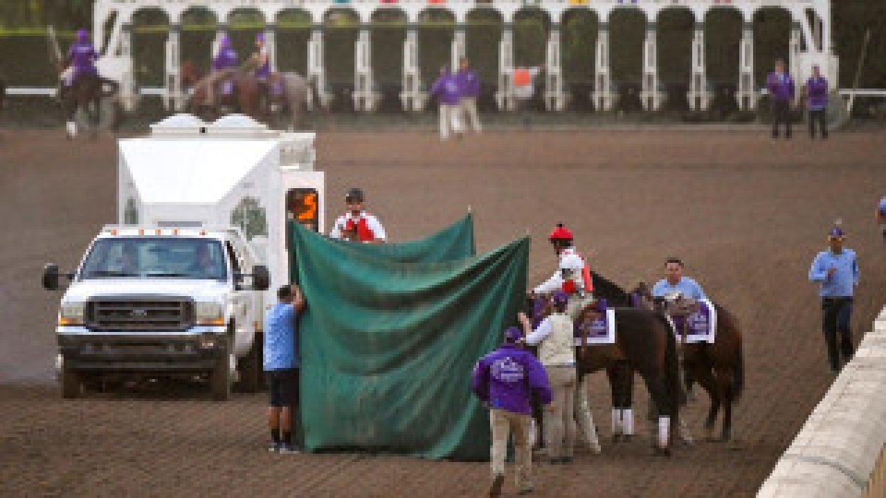 37th Horse Dies At Santa Anita Wnct