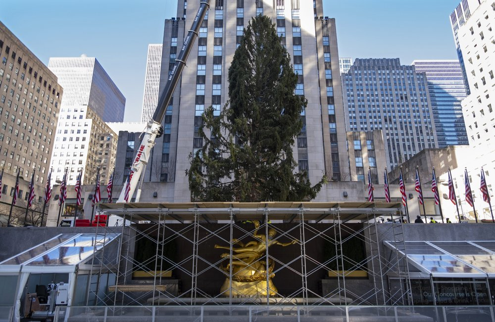 rockefeller center tree - photo #3